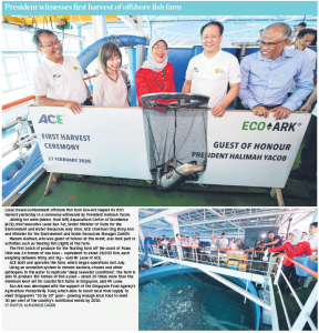 Source:[President witnesses first harvest of offshore fish farm] © Singapore Press Holdings Limited.
